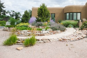 Structured Stone Xeriscape